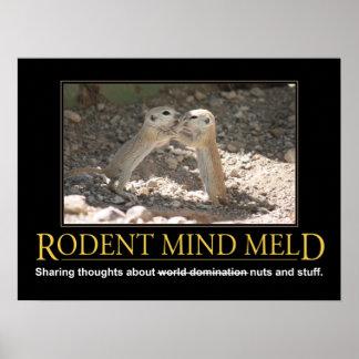 Demotivational Poster: Squirrel Mind Meld