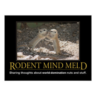 Demotivational Poster: Squirrel Mind Meld Poster