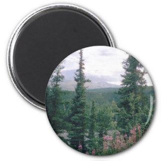 Denali -Alaska Magnet