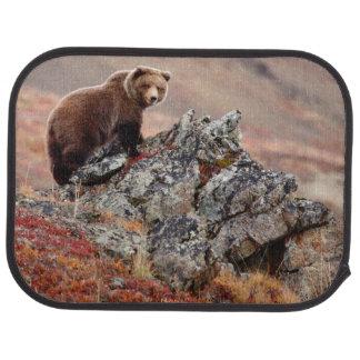 Denali Brown Bear Car Mat