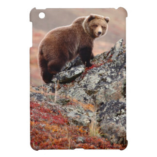 Denali Brown Bear iPad Mini Case