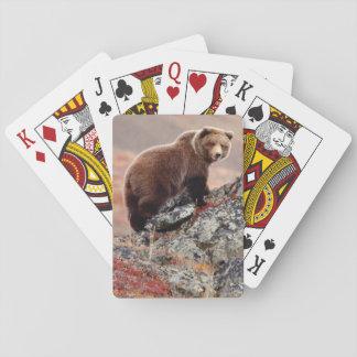 Denali Brown Bear Playing Cards