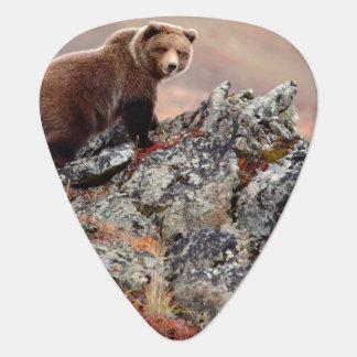 Denali Brown Bear Plectrum