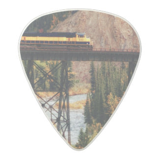 Denali National Park and Preserve USA Alaska Acetal Guitar Pick