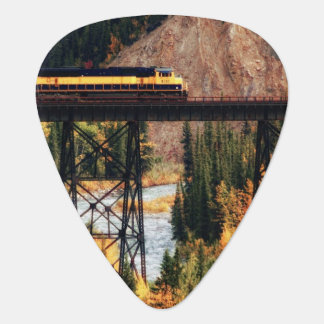 Denali National Park and Preserve USA Alaska Guitar Pick