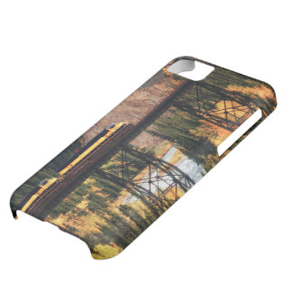 Denali National Park and Preserve USA Alaska iPhone 5C Case