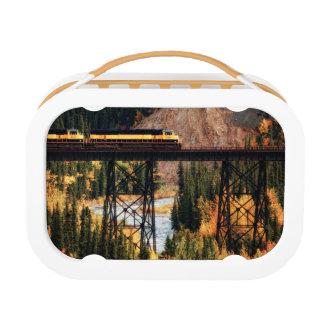 Denali National Park and Preserve USA Alaska Lunch Box