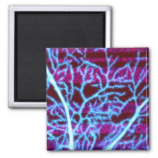Dendrites Magnet