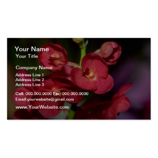 Dendrobium flowers business cards