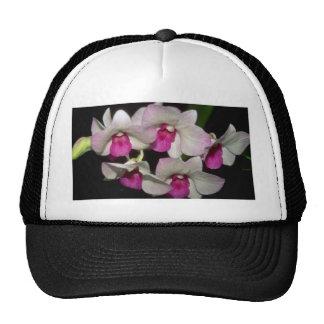 Dendrobium flowers hat