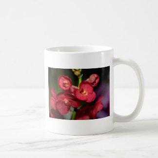 Dendrobium flowers coffee mugs