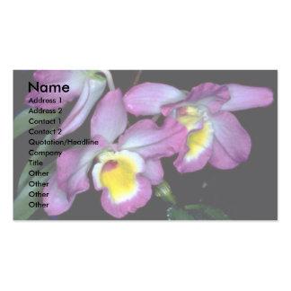 Dendrobium nobile business card templates