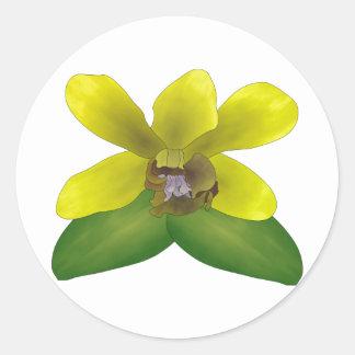 Dendrobium Orchid Round Sticker