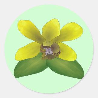 Dendrobium Orchid Classic Round Sticker