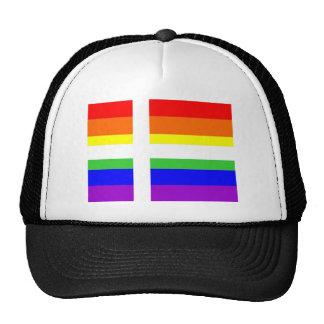 denmark country gay proud rainbow flag homosexual hat