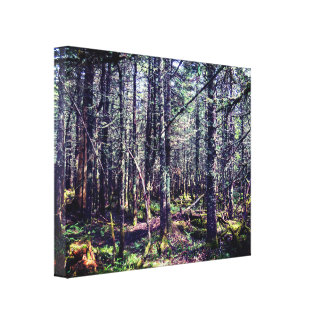 Dense Canadian Forest Canvas Print