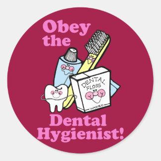 Dental Hygienist Round Sticker