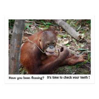 Dentist  Appointment Reminder Postcard