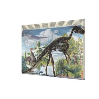 Denver, Colorado - Museum of Natural History 2 Canvas Print