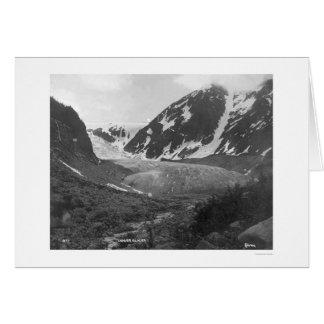 Denver Glacier Alaska 1914 Cards