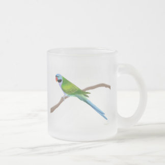 Derbyan Moustache Parakeet Frosted Glass Mug