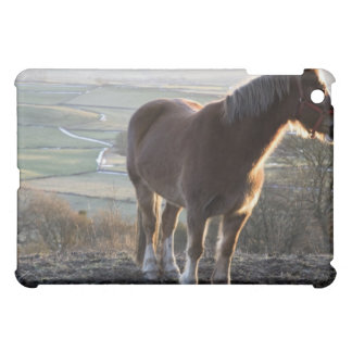 Derbyshire, England iPad Mini Case