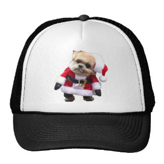 Derpy-Xmas-simple.png Hats