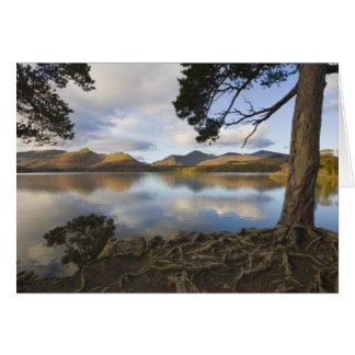 Derwentwater, Lake District, Cumbria, England Card