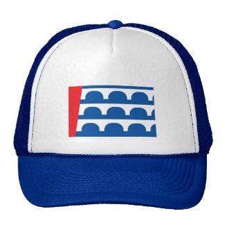 Des Moines city flag Cap