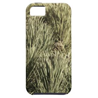Desaturated Shrub Case For The iPhone 5