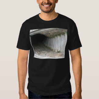Descending T Shirts