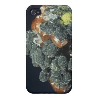 Descloizite on Calcite iPhone 4 Case