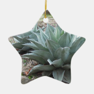 Desert Agave Plants Ceramic Star Decoration