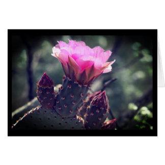 Desert Beavertail Cactus Card