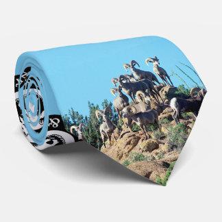 Desert Bighorn Sheep Tie