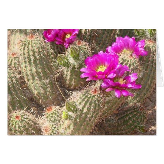 Desert bloom card
