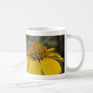 Desert Brittlebrush Mug