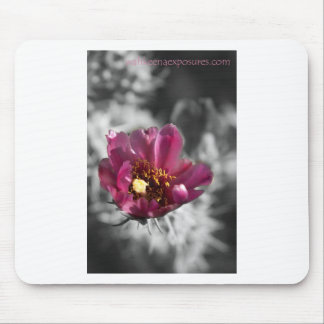 Desert Cactus Bloom Mousepads