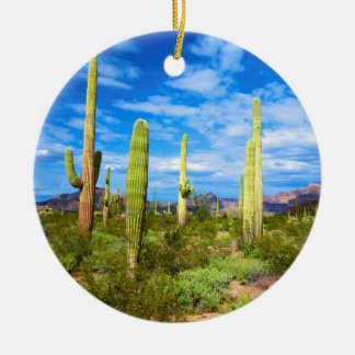 Desert cactus landscape, Arizona Round Ceramic Decoration