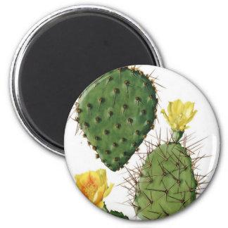 Desert Cactus Plant Pattern Vintage 6 Cm Round Magnet