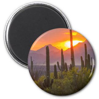 Desert cactus sunset, Arizona Magnet