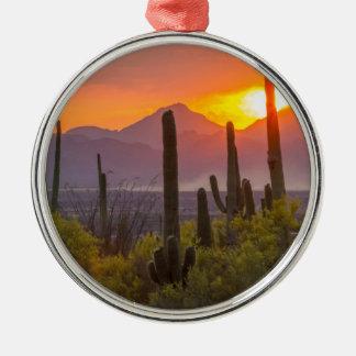 Desert cactus sunset, Arizona Silver-Colored Round Decoration