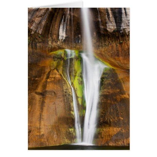 Desert Cascade Greeting Card