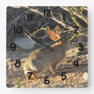 Desert Cottontail Rabbit Clock