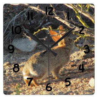 Desert Cottontail Rabbit Clock