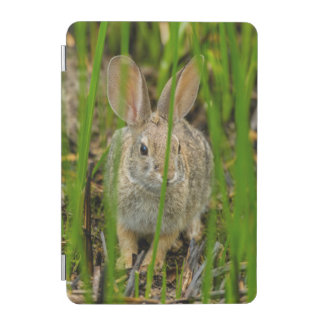 Desert Cottontail Rabbit iPad Mini Cover