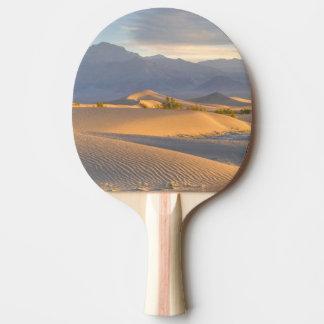 Desert Dawn Ping Pong Paddle