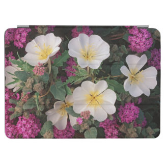 Desert Evening Primrose and Desert Sand Verbena, iPad Air Cover