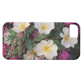 Desert Evening Primrose and Desert Sand Verbena, iPhone 5 Cases