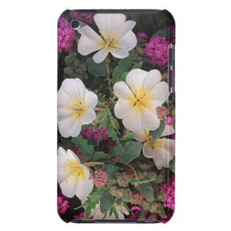 Desert Evening Primrose and Desert Sand Verbena, iPod Touch Covers